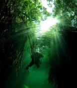 manati_megalodon_rebreather.jpg